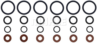 Fuel Injector O-Rings
